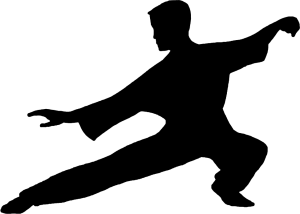 Tai-Chi silhouette cropped